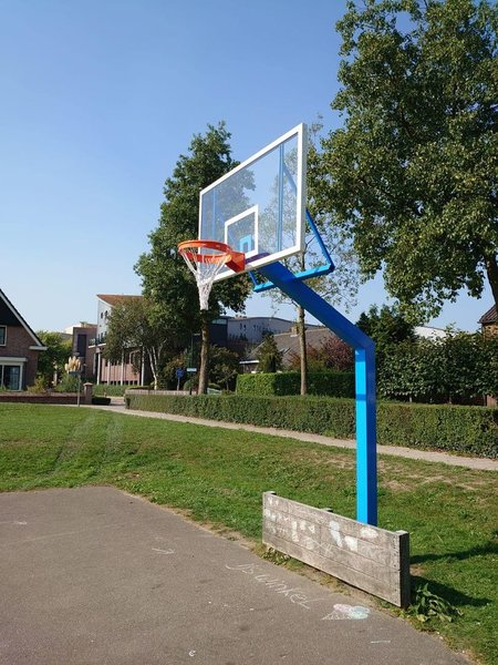 Basketbalpalen PROFI-outdoor